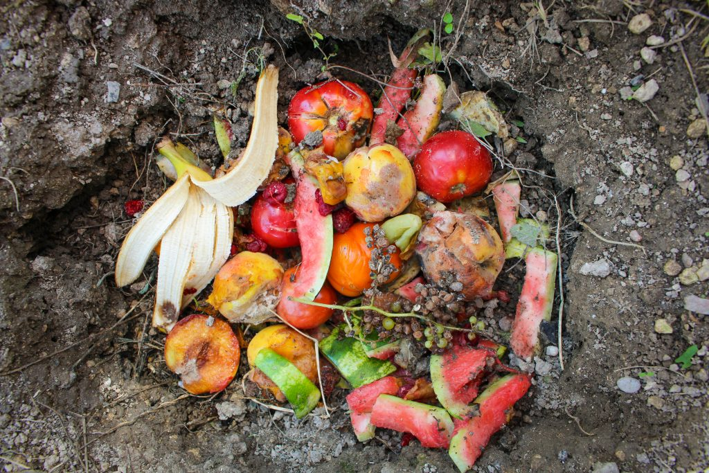 Compost from fruit at as advertised by Kiwano Hotels
